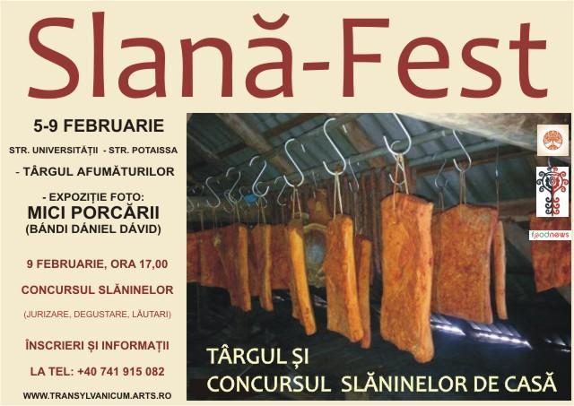 Slana Fest - Cluj Napoca 2014