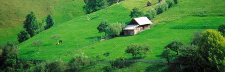 ROMANIA-TURISTICA.ro - Cazare Romania